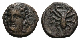 Sicily, Syracuse, c. 415-405 BC. Æ Tetras (12mm, 1.89g, 3h). Head of nymph facing slightly l., wearing necklace. R/ Octopus. CNS II, 29; SNG ANS 385-8...