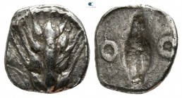 Lucania. Metapontion circa 540-510 BC. Diobol AR