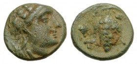 Aeolis, Temnos, 3rd century BC. Æ (10mm, 1.40g, 12h). Bearded head of Dionysos r., wearing ivy wreath. R/ Grape bunch on vine; grape to l. Cf. SNG Cop...