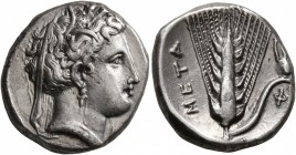 LUCANIA. Metapontion. Circa 340-330 BC. Didrachm or Nomos (Silver, 20 mm, 7.84 g, 12 h), Φ..., magistrate. Head of Demeter to left, wearing wreath of ...
