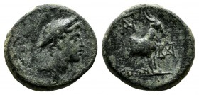Aeolis, Aigai. ca.1st-2nd centuries BC. Æ (14mm, 1.98g). Draped bust of Hermes right, wearing petasos. / AIΓAEΩN. Forepart of goat right; monograms ab...