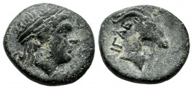 Aeolis, Aigai. ca.300-200 BC. Æ (16mm, 3.95g). Laureate head of Apollo right / AIΓAE. Head of goat right. SNG Copenhagen 1; BMC 2-5.