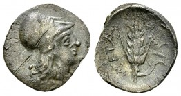 Metapontum AR Diobol, c. 325-275 BC 