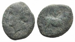 Campania, Cales(?), c. 265-240 BC. Æ (17mm, 4.36g, 9h). Laureate head of Apollo l.; branch behind. R/ Man-headed bull standing r., head facing; lyre a...
