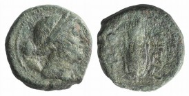 Northern Lucania, Paestum, after 211 BC. Æ Uncia (12mm, 2.41g, 9h). Wreathed head of Demeter r.; pellet behind. R/ Grain ear; caduceus and pellet to l...