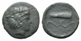 Sicily, Selinos, c. 415-409 BC. Æ Hemilitron (16mm, 3.15g, 11h). Head of Herakles r., wearing lion skin. R/ Bow and quiver. CNS I, 11; SNG ANS 716. Ra...