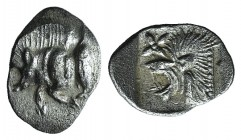 Mysia, Kyzikos, c. 450-400 BC. AR Hemiobol (9mm, 0.39g, 3h). Forepart of boar l.; tunny to r. R/ Head of lion l.; star to l.; all within incuse square...