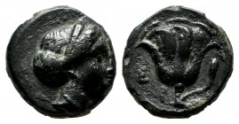 Caria. Rhodes. Circa 338-304 BC. AE (10mm, 1.40g). Head of nymph Rhodos right / P - O / Σ. Rose with bud right. BMC 108 ff. var. (letter).