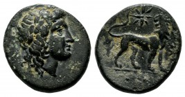 Ionia. Miletos. Ca. 313-290 BC, magistrate. Laureate head of Apollo right / Lion standing right, head left; star above. SNG Copenhagen 977.