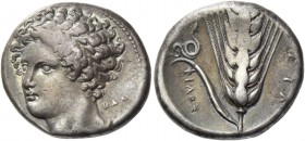 Lucania, Metapontum. Nomos circa 340-330, AR 7.76 g. Laureate head of Apollo, facing three-quarters l.; behind the neck, KAΛ. Rev. ΦΙΛΟΞ Ear of barley...