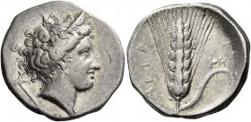 Metapontum. Nomos circa 340-330 BC, AR 7.77 g. Diademed head of Demeter r., wearing triple pendant earring and necklace; in l. field, cross-headed tor...
