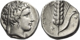 Metapontum. Nomos circa 340-330 BC, AR 7.64 g. Veiled head of Demeter r., wearing barley wreath. Rev. Ear of barley with leaf to r.; above, mouse and ...