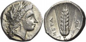 Metapontum. Nomos circa 330-290, AR 7.84 g. Barley-wreathed head of Demeter r. Rev. Ear of Barley. Johnston C 9.1. Historia Numorum Italy 1591. Minor ...
