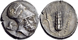Lucania. Metapontum. Circa 340-330 BC. Distater (Silver, 26 mm, 15.58 g, 6 h). Bearded head of Leukippos to right, wearing a Corinthian helmet ornamen...