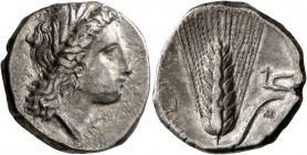 LUCANIA. Metapontion. Circa 330-290 BC. Didrachm or Nomos (Silver, 21 mm, 7.83 g, 11 h). Head of Demeter to right, wearing wreath of grain ears, tripl...