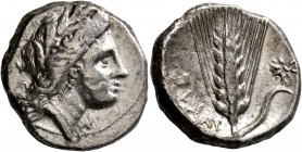 LUCANIA. Metapontion. Circa 330-290 BC. Didrachm or Nomos (Silver, 20 mm, 7.63 g, 4 h). Head of Demeter to right, wearing grain wreath, triple pendant...