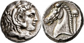 SICILY. Entella. Punic issues , circa 300-289 BC. Tetradrachm (Silver, 25 mm, 16.07 g, 11 h). Head of Herakles to right, wearing lion skin headdress. ...