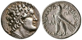 Ptolemaic Kings of Egypt, Ptolemy VI Philometor, Circa 151/150 BC. AR Tetradrachm (14.2 g, 25.47 mm)