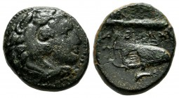 "Kings of Macedon. Alexander III ""the Great"". 336-323 BC. AE (17mm, 5.47g). Uncertain Macedonian mint. Head of Herakles right, wearing lion's skin head..."