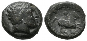 Kings of Macedon. Philip II. 359-336 BC. AE (15mm, 6.30g). Laureate head of Apollo right / ΦIΛIΠΠOY above naked youth on horse prancing right, monogra...