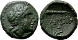 KINGS OF SKYTHIA. Sariakes (Circa 180-168/7 BC). Ae.