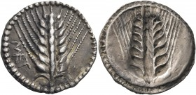 LUCANIA. Metapontum. Circa 510-470 BC. Drachm or Third Stater (Silver, 17 mm, 2.72 g, 12 h). ΜΕΤ Ear of barley with seven grains; around, border of do...