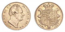 GREAT BRITAIN. William IV, 1830-37. Gold Sovereign 1837, London. 7.99 g. S-3829B. Very fine.
