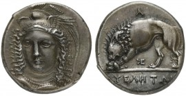 Lucania, Velia, Didrachm signed by Kleudoros, ca. 334-300 BC; AR (g 7,52; mm 19; h 5); Head of Athena facing three quarters l., with winged and creste...