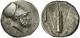 Lucania, Metapontion, Nomos, ca. 330 BC; AR (g 7,90; mm 20; h 6); Helmeted head of Leukippos r.; behind, lion's head; below, monogram. Rv. META, barle...