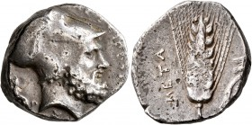 LUCANIA. Metapontion. Circa 340-330 BC. Stater (Silver, 21 mm, 7.74 g, 9 h). ΛEΥKIΠΠOΣ Bearded head of Leukippos to right, wearing Corinthian helmet; ...