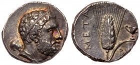 Lucania, Metapontum, ca. 280 BC. AR Nomos (7.84 g). Bearded head of Herakles r., wearing thin hair band over curled hair; club over shoulder and lion'...