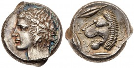Sicily, Leontini. AR Tetradrachm (17.38 g), 430-420 BC. Laureate head of Apollo l. Rev. LEO - N - TI - NON, lion head l., around, three barley grains ...