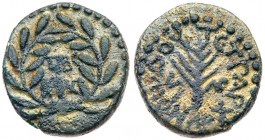 Judaea, Herodian Kingdom. Herod III Antipas. Æ Quarter (3.00 g), 4 BCE-39 CE. Tiberias, RY 33 (20/1 CE). TIBE/PIAC in two lines within wreath. R...