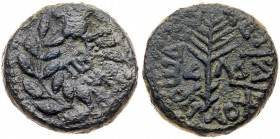 Judaea, Herodian Kingdom. Herod III Antipas. Æ Half (7.88 g), 4 BCE-39 CE. Tiberias, RY 34 (30/1 CE). TIBE/PI[AC] in two lines within wreath. Re...