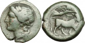 Greek Italy. Central and Southern Campania, Neapolis. AE, 275-250 BC. D/ Head o Apollo left, laureate. R/ Man-headed bull right; above, Nike flying. H...