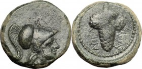 Greek Italy. Northern Apulia, Arpi. AE, 215-212 BC. D/ Head of Athena right, helmeted. R/ Bunch of grapes. HN Italy 650. AE. g. 35.00 mm. 15.50 Green ...