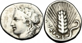 Greek Italy. Southern Lucania, Metapontum. AR Stater, c. 400-340 BC. D/ Female head left. R/ Barley-ear; leaf to right. HN Italy 1545. Noe 524. AR. g....