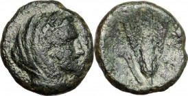 Greek Italy. Southern Lucania, Metapontum. AE, 275-250 BC. D/ Head of Demeter right, veiled. R/ Barley-ear. HN Italy 1693. AE. g. 2.40 mm. 13.00 F.
