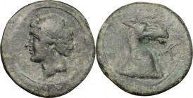 Greek Italy. Bruttium, Carthaginians in South-West Italy. AE Unit, 215-205 BC. D/ Head of Tanit-Demeter left, wearing wreath. R/ Head of horse right; ...