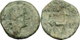 Greek Italy. Bruttium, Kaulonia. AE, 400-388 BC. D/ Head of river god right. R/ Stag right. HN Italy 2069. AE. g. 2.21 mm. 14.00 Green patina. About V...