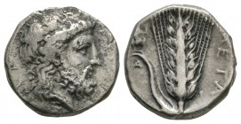 Ancient Greek Coins - Lucania - Metapontum - Zeus Nomos
