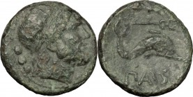 Greek Italy. Northern Lucania, Paestum. AE Quadrans, 218-201 BC. D/ Head of Poseidon right, diademed; behind, three pellets. R/ Dolphin right; above, ...