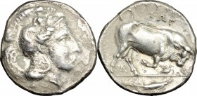 Greek Italy. Southern Lucania, Thurium. AR Stater, 350-300 BC. D/ Head of Athena right, wearing Attic helmet decorated with Scylla, ΣΩ on neck-guard. ...