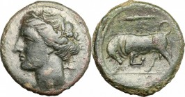 Sicily. Syracuse. Hieron II (274-216 BC). AE, 20mm, 274-216 BC. D/ Head of Kore left, wearing wreath. R/ Bull charging left; above, club. CNS II, 191....
