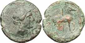 Punic Sicily. . AE 27mm, 215-205 BC. D/ Head of Tanit right. R/ Horse stepping right; behind, palm-tree. SNG Cop. 377. AE. g. 13.10 mm. 27.00 Dark gre...
