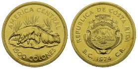 Costa Rica Republic since 1848. 1.500 Colones 1974. Giant anteater. Fr. 28. 33.73 g. Gold. FDC
