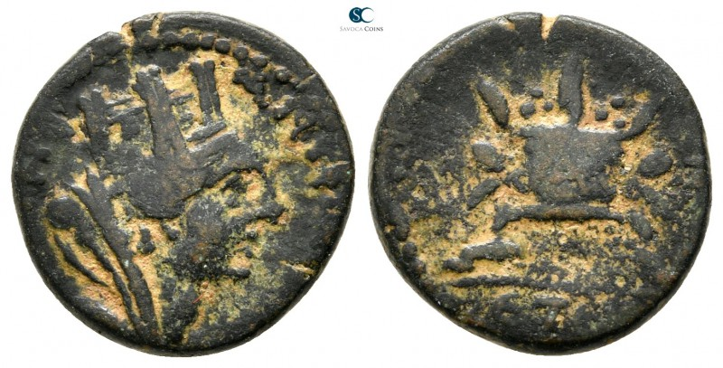 Seleucis and Pieria. Antioch. Pseudo-autonomous issue AD 69-79. 