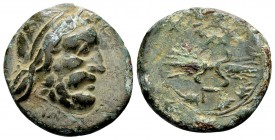 Kingdom of Epeiros, Pyrrhos. 297-272 BC. Æ19, 4.35 g. Laureate head of Zeus right; below: monogram / A Π thunderbolt within oak wreath. SNG Copenhagen...