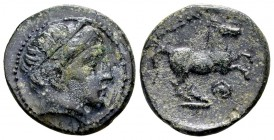 Kingdom of Macedon, Alexander III. Uncertain mint in Macedon, 336-323 BC. Æ17, 3.98 g.  Head of Apollo right / ΑΛEΞΑΝΔΡΟΥ horse rearing right; below: ...