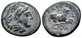 Kingdom of Macedon, Kassander. Pella or Amphipolis, 316-306 BC. Æ17, 3.33 g. Head of Herakles wearing lion skin right / KAΣΣANΔPOY lion reclining righ...
